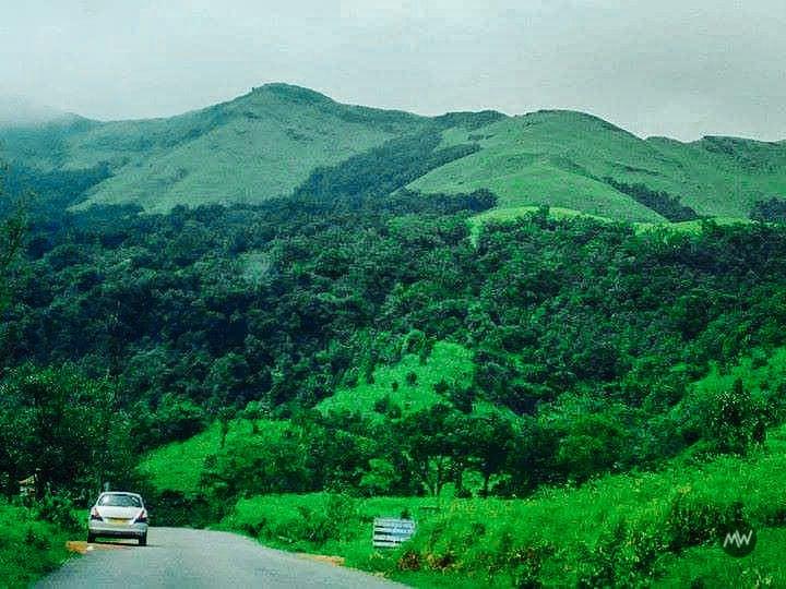 Kudremukh National Park places to visit in Chikmagalur