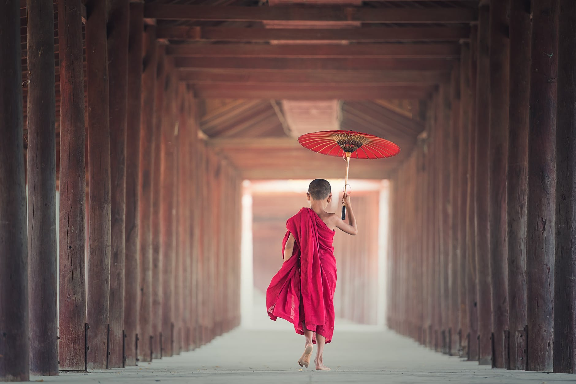 You are currently viewing What Clueless Me Learned From Monks? (5 Priceless Lessons)