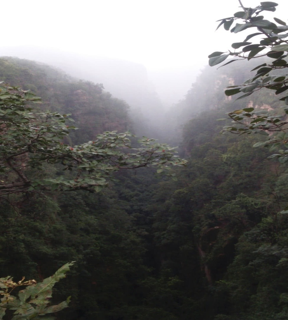 My Accidental Journey to Panchmarhi 3