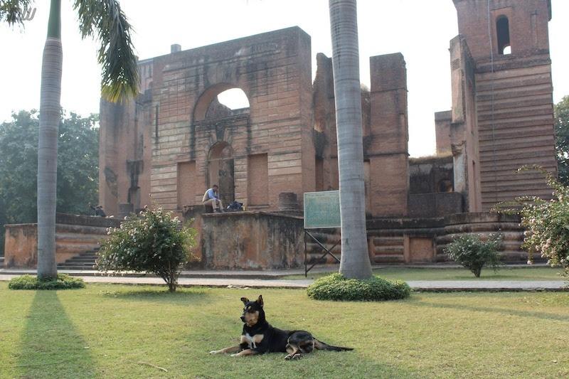 Dilkusha Kothi: Unpopular Palace of Lucknow's Deep History 4