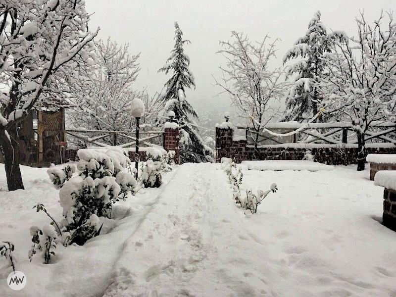 Our hostel garden after snowfall