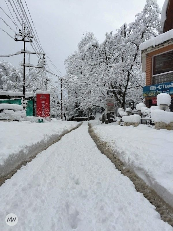 trails of vehicles - snowfall in Manali