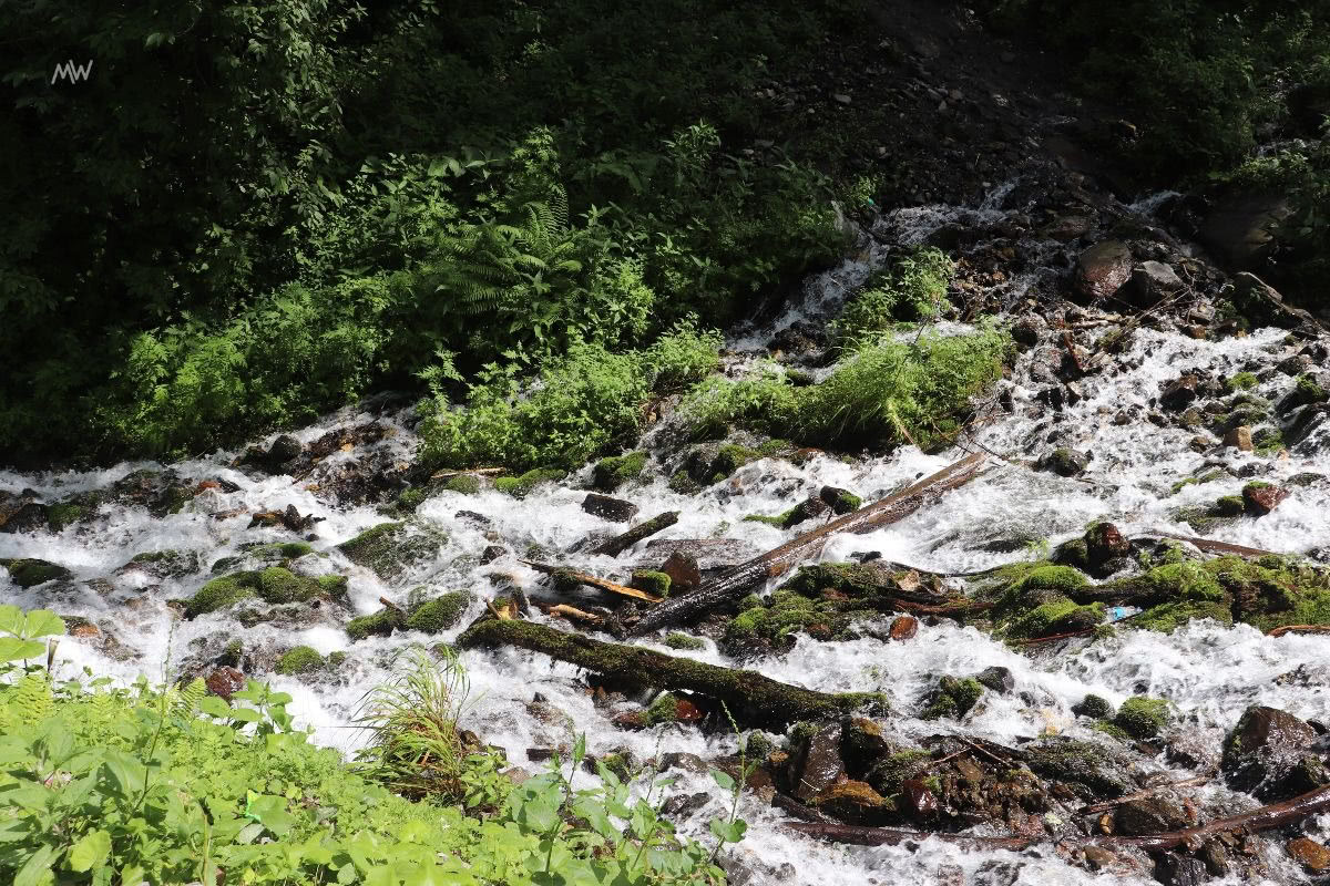 A waterfall on the way to Kheerganga
