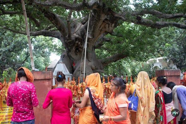 People worshipping at Parijaat