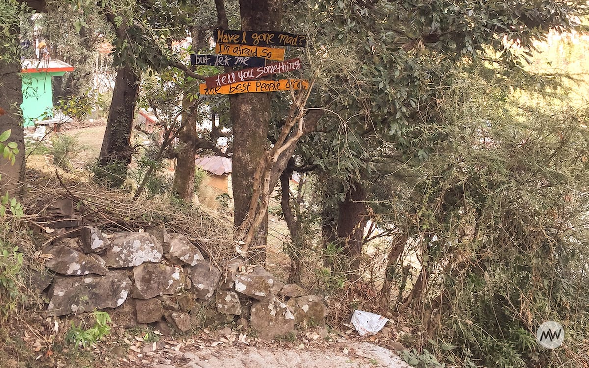 Somewhere in Dharamkot, McLeodganj, Himachal Pradesh