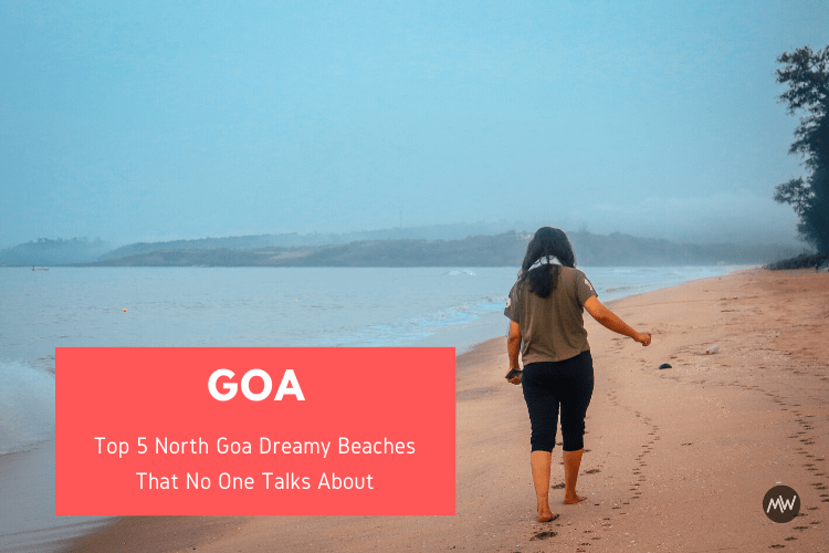 Read more about the article Top 5 North Goa Dreamy Beaches That No One Talks About