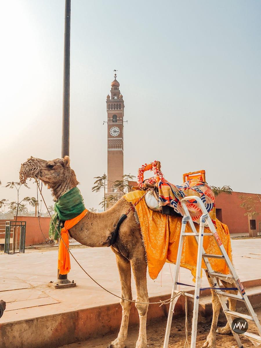 Hussainabad Clock Tower - Tallest Clock Tower of India - Camel Safari