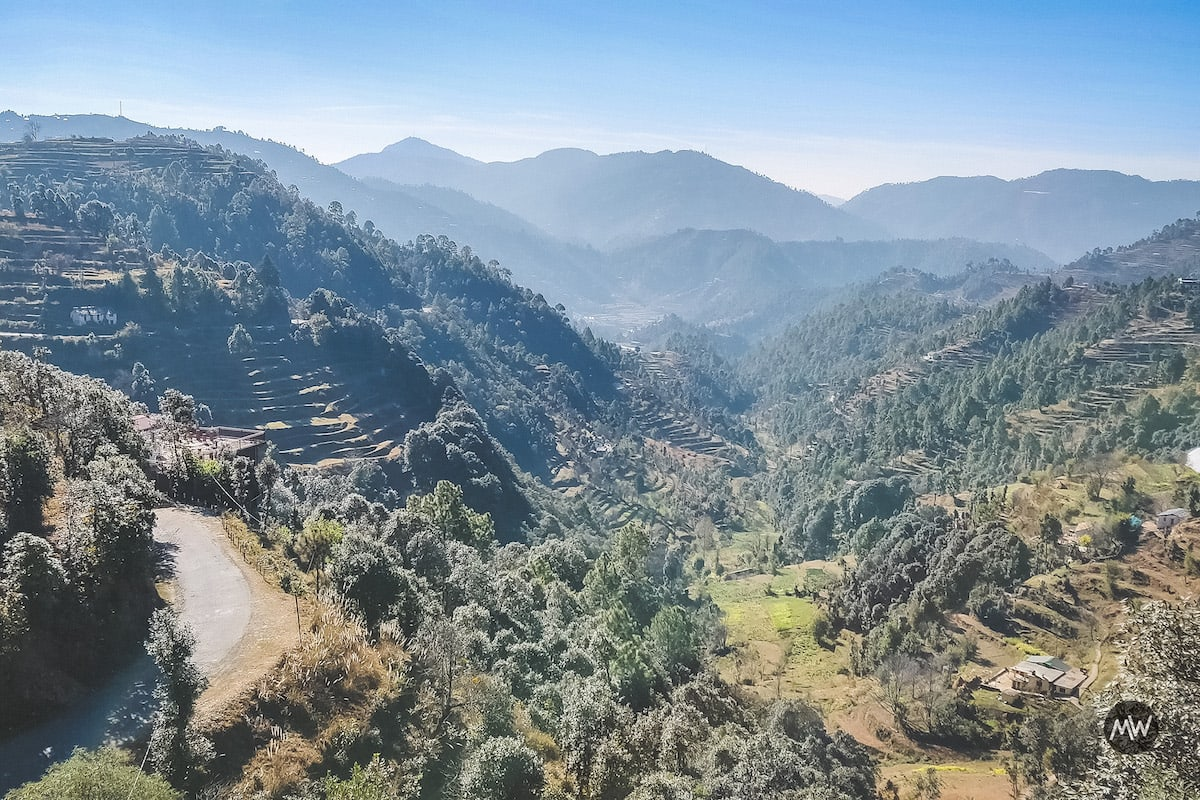 On the way to Mukteshwar, the scenes turn greener and serene - Mukteshwar Dham