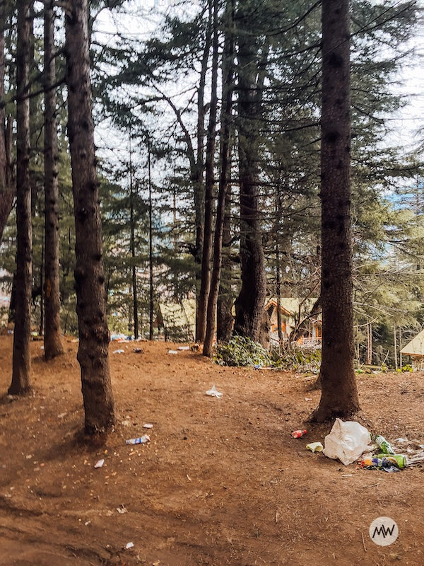 Bulging waste on the way to Hidimba Devi when I traveled to Manali