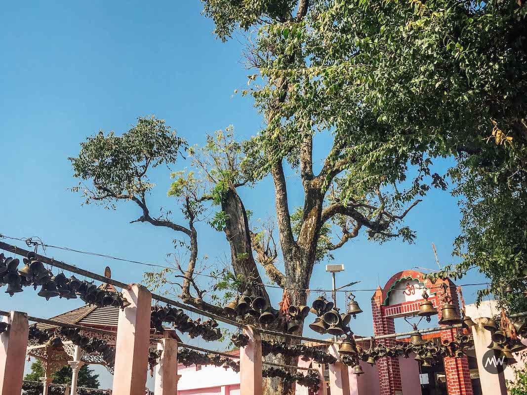 Kot Bhramari Temple in Baijnath