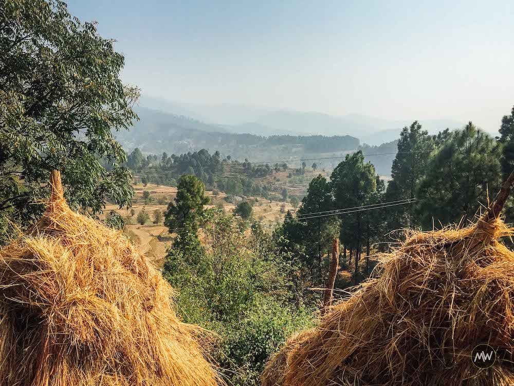 Stockpiled dried grass on our way to Kot Bhramari Temple