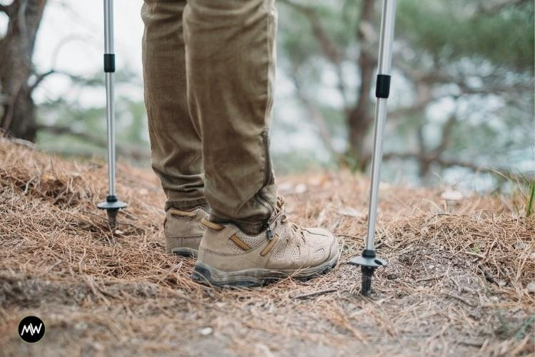 A trekking pole with mud basket