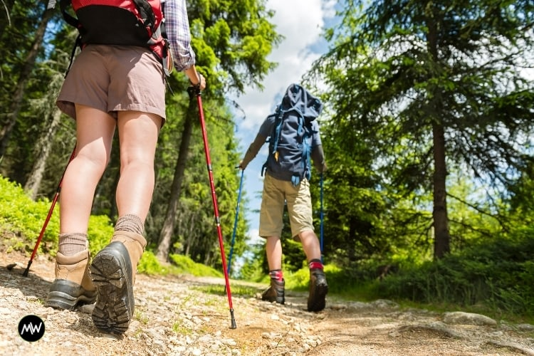 Why Do You Need A Trekking Pole? And 13 Best Picks