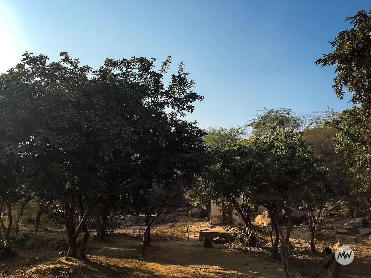 Govardhan Parvat - Places To Visit in Gokul Govardhan