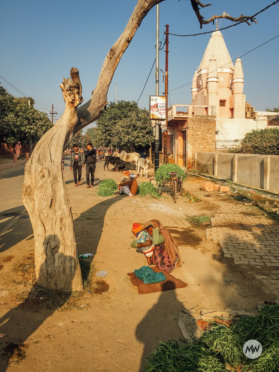 Street vendors selling grass or weed - Places To Visit in Gokul Govardhan