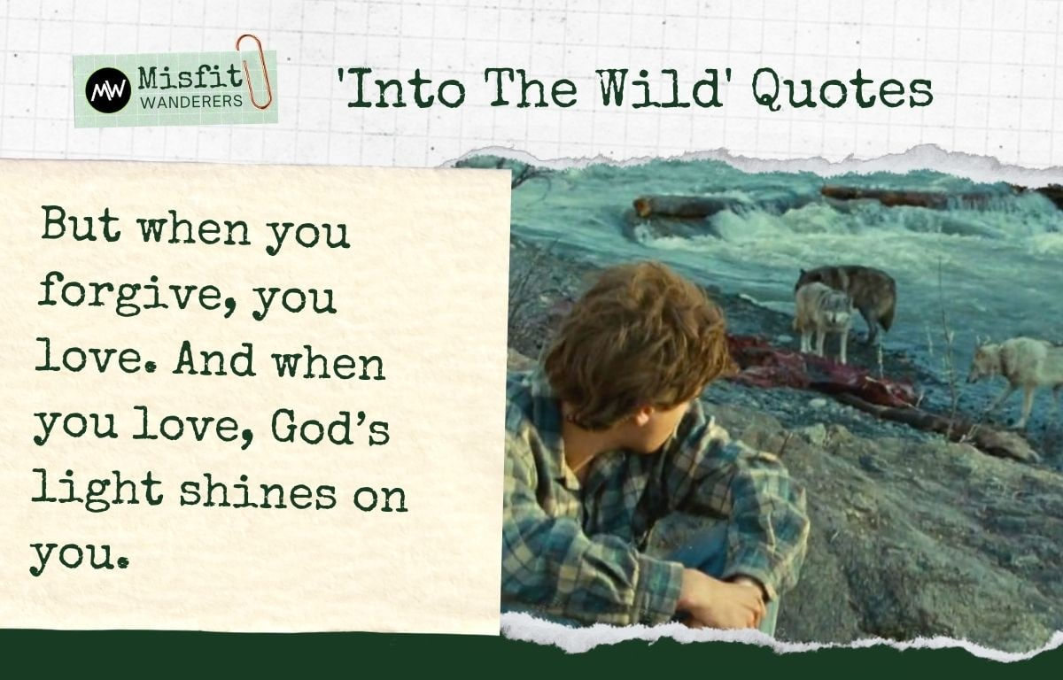 Into The Wild Quotes 10