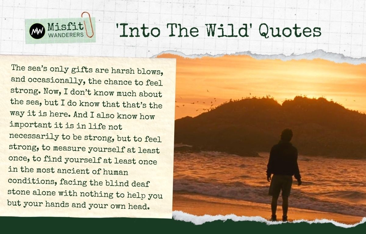 Into The Wild Quotes 4