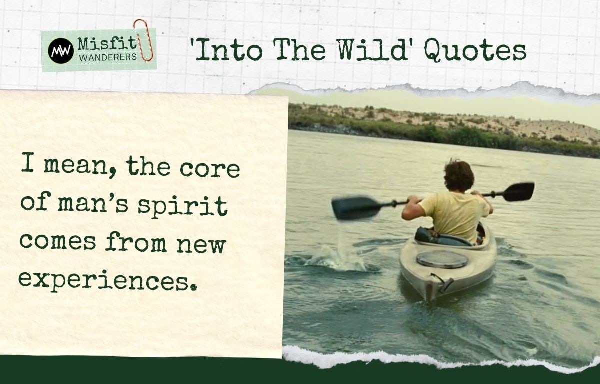 Into The Wild Quotes 8